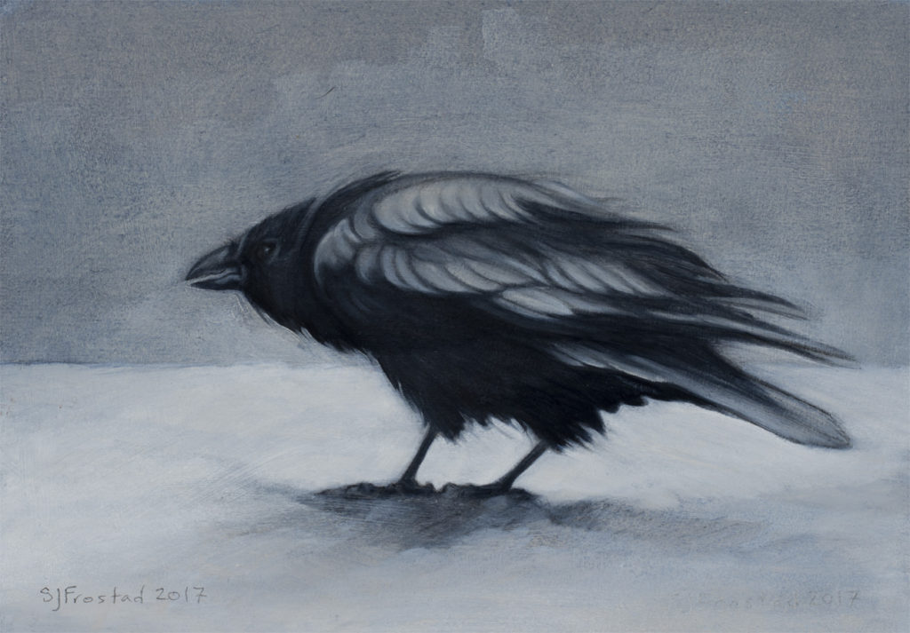 "Raven in Snow, 2017. Graphite & oil on art board, 5x7"". Sold"