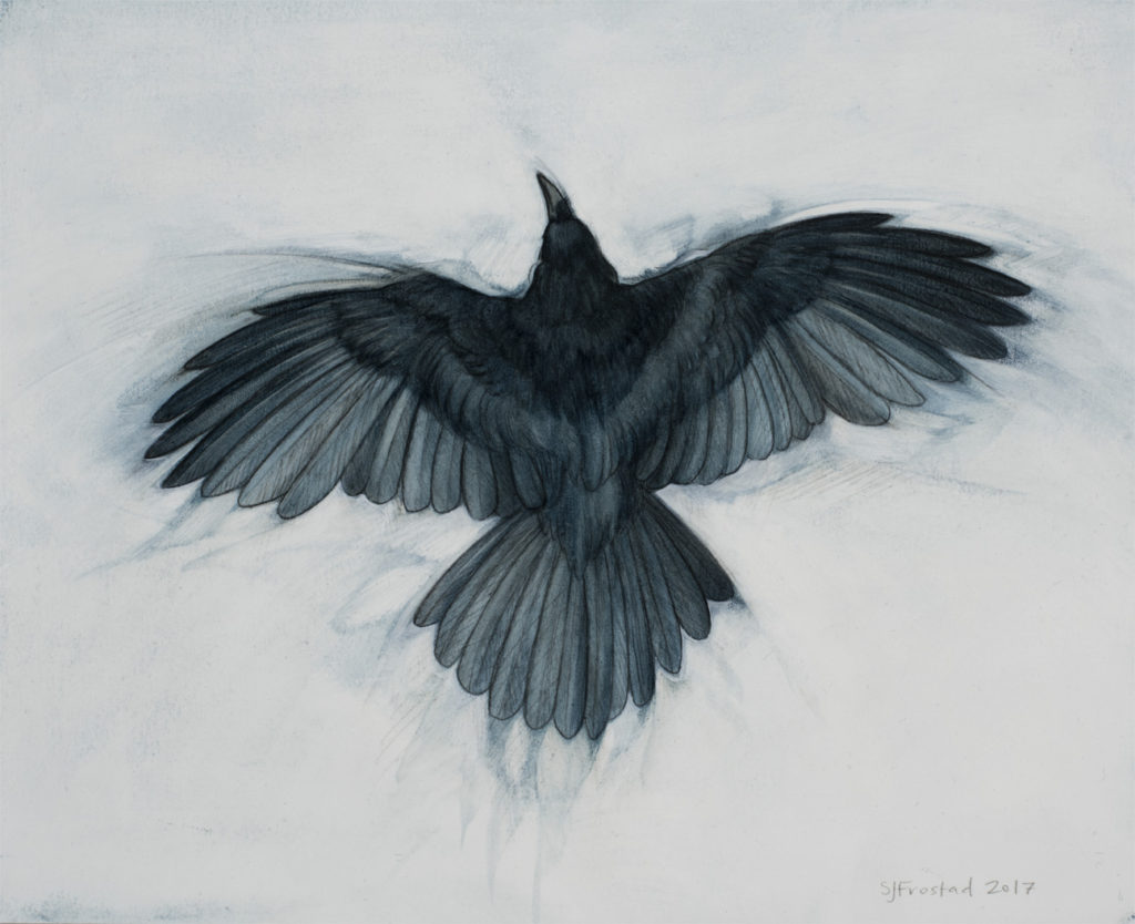 "Wingspan, 2017. Graphite & oil on art board, 8x10""."