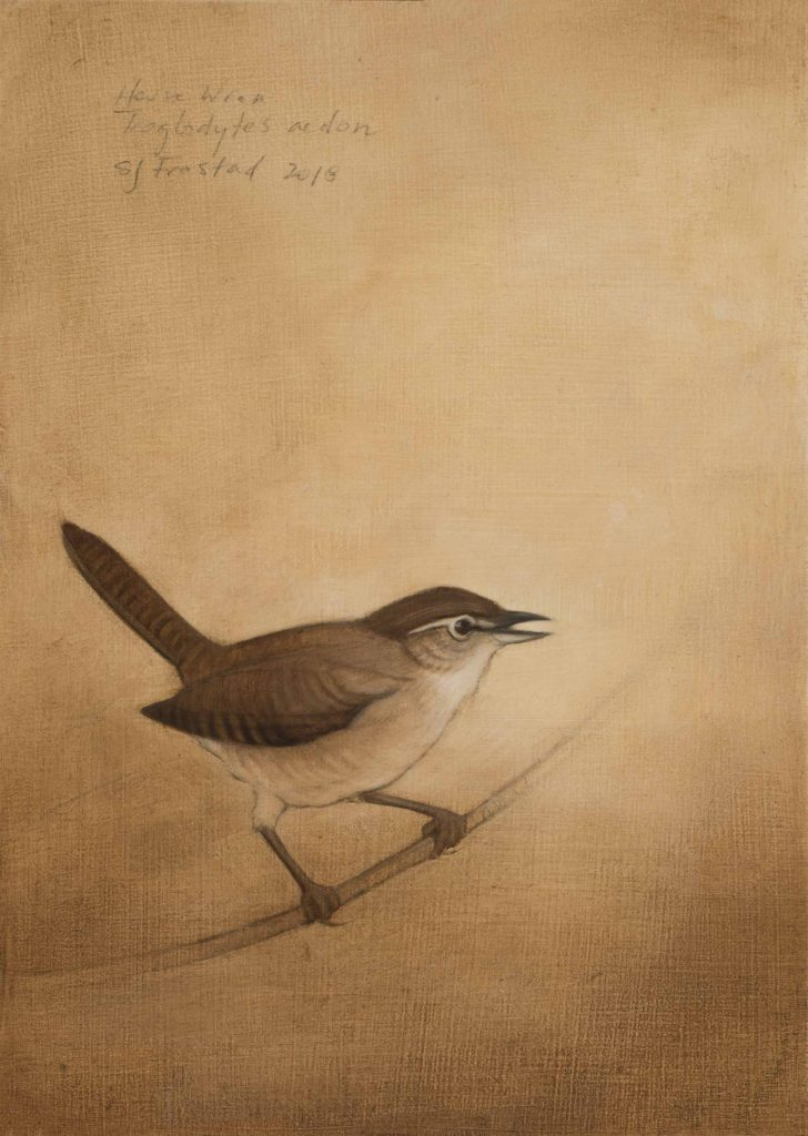 "Singing Wren, 2018. Graphite & oil on wood panel, 7x5"" Sold"