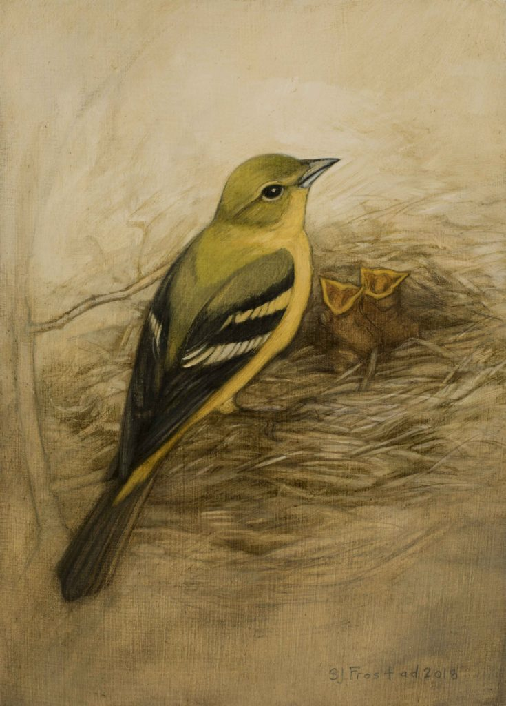 "Tanager with Chicks, 2018. Graphite & oil on wood panel, 7x5"". Sold"