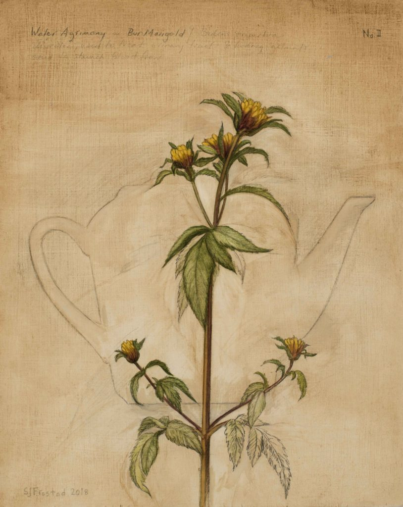 Tea Leaves II, 2018. Graphite & oil on wood panel, 10x8""
