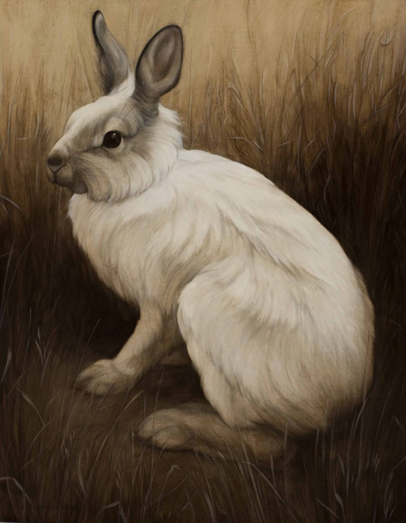 "Snowshoe Hare, 2018. Graphite & oil on wood panel, 14x11"". Sold"