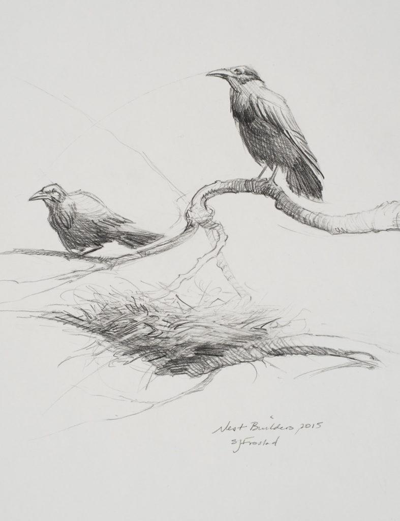 "Nest Builders, 2015. Graphite on paper, 10x8""."