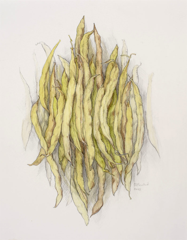 "Pods, 2015. Mixed media on paper, 14x11"". Sold"