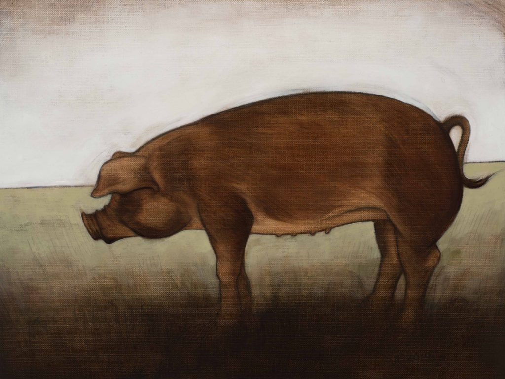 "Year of the Pig, 2019. Graphite & oil on paper, 8.5x12""."